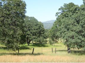 Property for sale at 1 Mountain Oak Court, Browns Valley,  California 95901