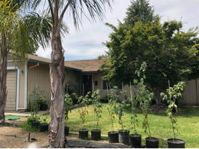 Property for sale at 9972 P Street, Live Oak,  CA 95953