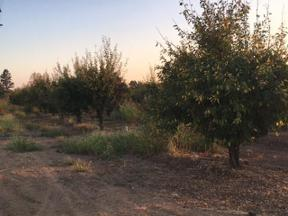 Property for sale at 0 Gilstrap Avenue, Gridley,  CA 95948