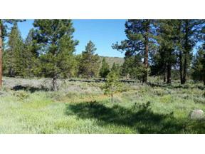 Property for sale at 11340 Whitehorse Road, Truckee,  California 96161