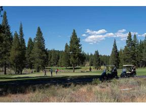 Property for sale at 11623 Henness Road, Truckee,  California 96161