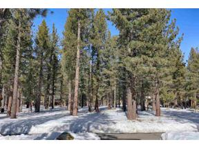 Property for sale at 12820 Caleb Drive, Truckee,  California 96161