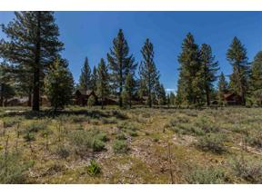 Property for sale at 12506 Caleb Drive, Truckee,  CA 96161