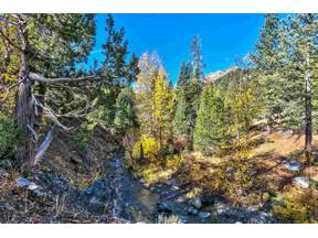 Property for sale at 1432 Mineral Springs Trail, Alpine Meadows,  CA 96146