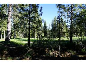 Property for sale at 13510 Ski View Loop, Truckee,  California 96161