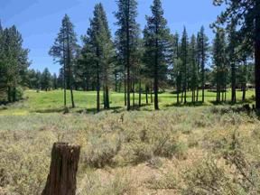 Property for sale at 13150 Snowshoe Thompson, Truckee,  California 96161
