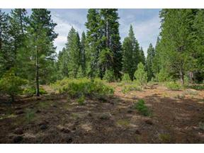 Property for sale at 12815 Zurich Place, Truckee,  California 96161