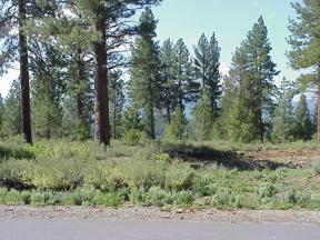 Property for sale at 12864 Lookout Circle, Truckee,  CA 96161