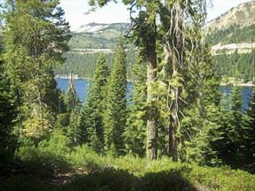 Property for sale at 000 Mt Judah Drive, Truckee,  CA 96161