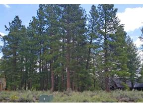 Property for sale at 15627 Sudsbury Circle, Truckee,  CA 96161