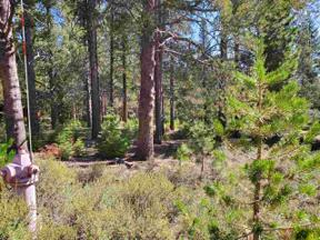 Property for sale at 11861 Bottcher Loop, Truckee,  California 96161