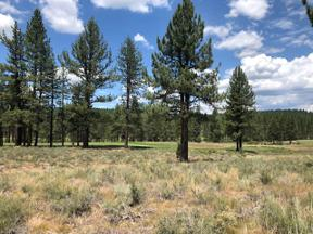 Property for sale at 11545 Henness Road, Truckee,  California 96161