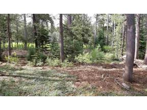 Property for sale at 14896 Swiss Lane, Truckee,  California 96161