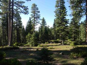 Property for sale at 0 Old County Road, Carnelian Bay,  CA 96140