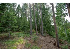 Property for sale at 12685 Zurich Place, Truckee,  California 96161