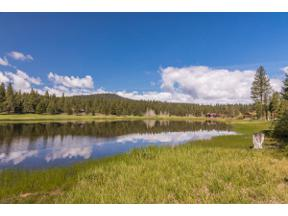 Property for sale at 8800 George Whittell, Truckee,  California 96161