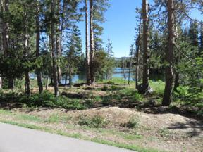 Property for sale at 1123 Serene Road, Soda Springs,  CA 95728