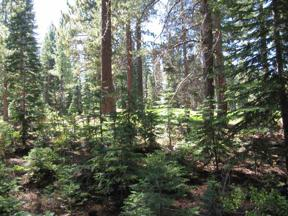 Property for sale at 15146 Swiss Lane, Truckee,  California 96161