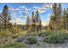 Property for sale at 658 & 670 Joseph Bernard, Truckee,  California 96161