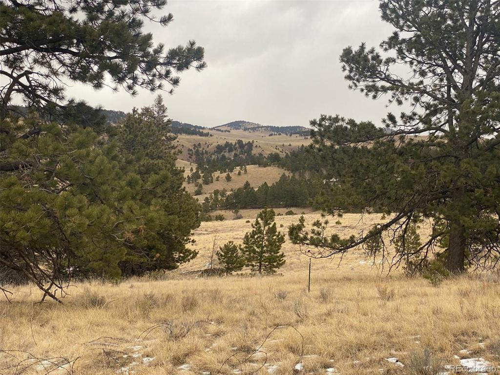 Photo of home for sale at CR 334, Westcliffe CO