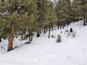 Property for sale at 28482 Crystal Ridge Road, Pine,  Colorado 80470