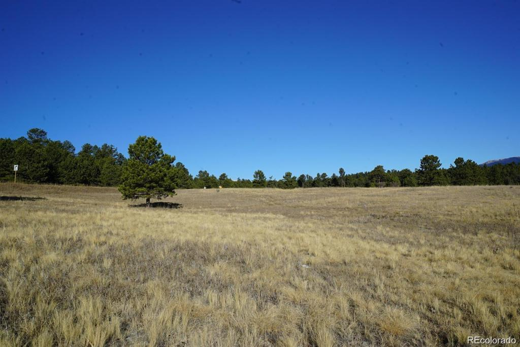 Photo of home for sale at 10 Bulldogger Drive, Bailey CO