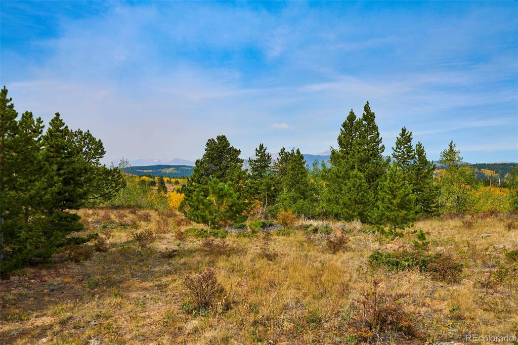 Photo of home for sale at Parcel 23A Bald Mountain Road, Central City CO
