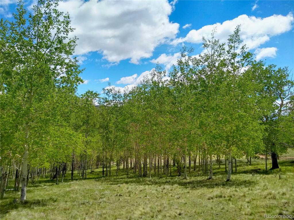 Photo of home for sale at 4780 County Road 352a, Canon City CO