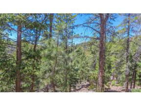 Property for sale at 32634 Lodgepole Circle, Evergreen,  Colorado 80439