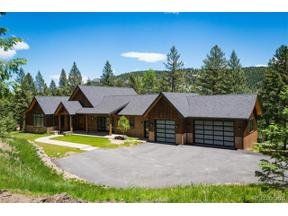 Property for sale at 6383 Little Cub Creek Road, Evergreen,  Colorado 80439