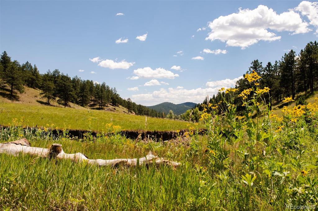 Photo of home for sale at Lot 4 Legacy Ranch, Evergreen CO