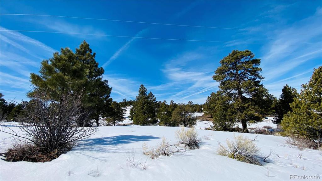 Photo of home for sale at 8 W Conejos Trails, Antonito CO