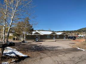Property for sale at 9767 Rhodus Street, Conifer,  Colorado 80433