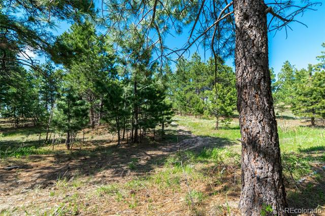 Photo of home for sale at 18925 Hilltop Pines Path, Monument CO