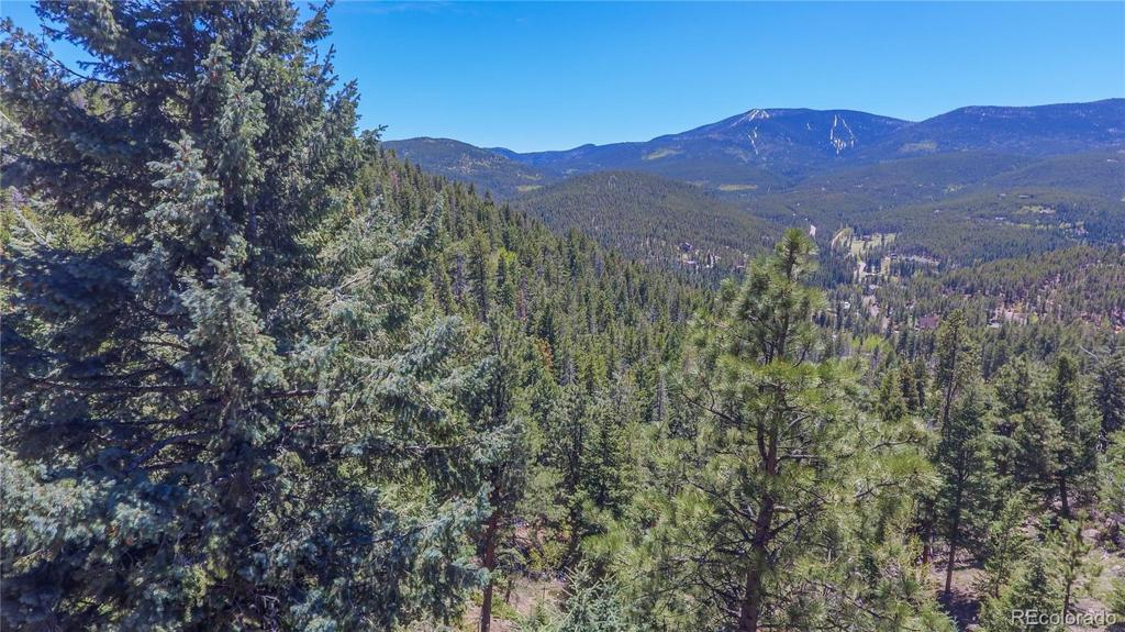 Photo of home for sale at 7128-1 Lodgepole Court, Evergreen CO