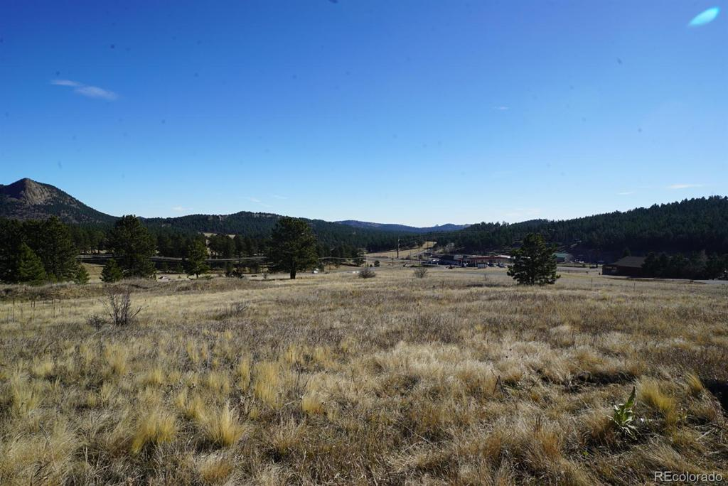 Photo of home for sale at 356 Bull Dogger Road, Bailey CO