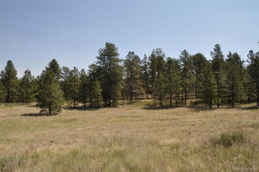 Photo of home for sale at n/a Homestead Lane, Florissant CO