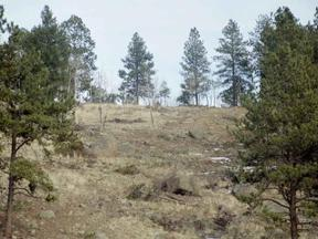 Property for sale at Lot 16 Lions Head Ranch, Pine,  Colorado 80470