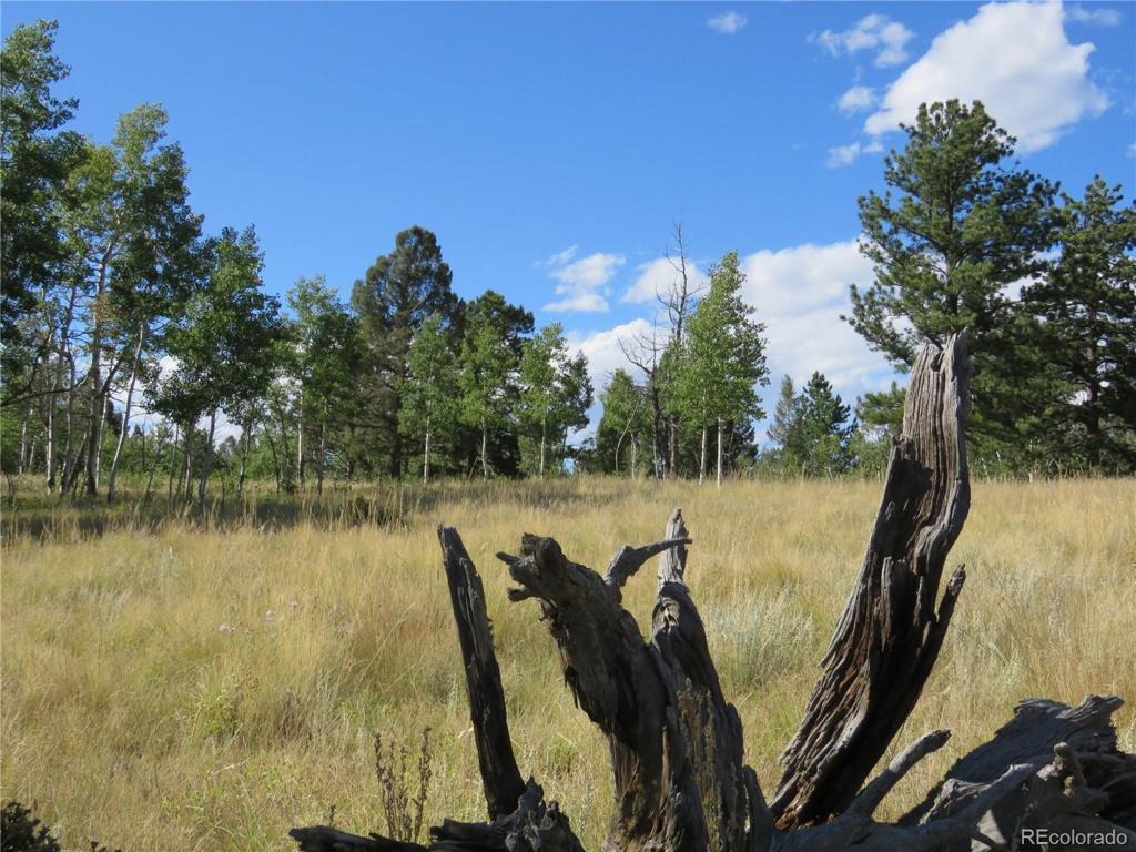 Photo of home for sale at 47 Summit Drive, Florissant CO