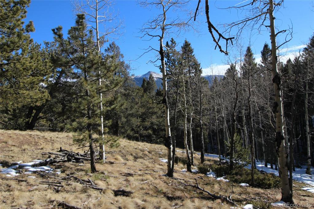 Photo of home for sale at 51 Mica Road, Divide CO