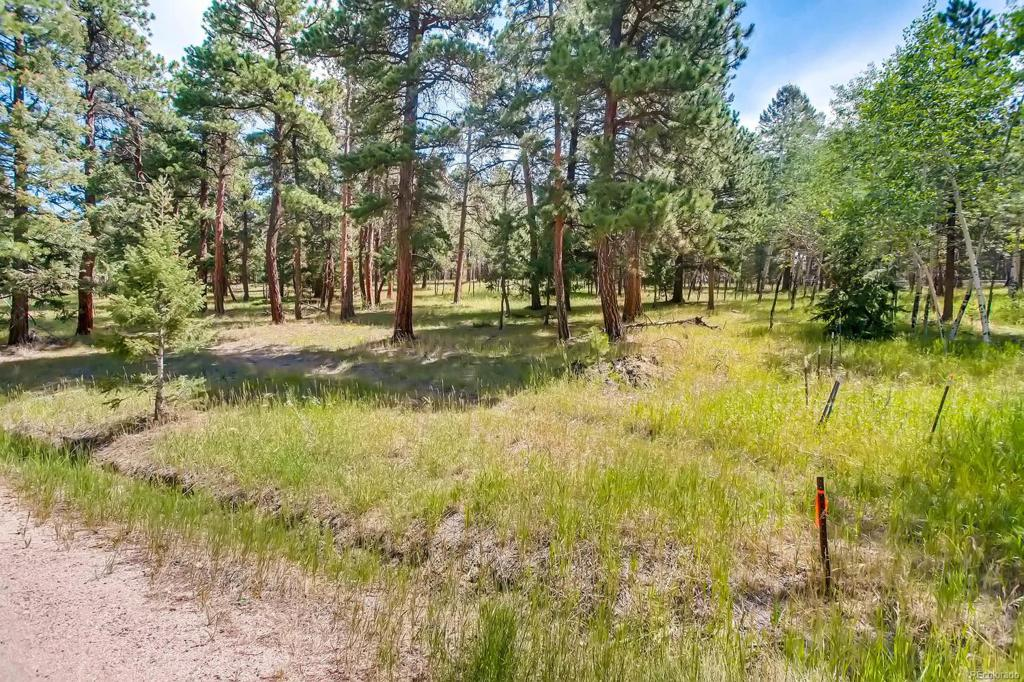 Photo of home for sale at 0-3 Richmond Hill Road, Conifer CO