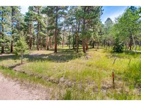 Property for sale at 0-3 Richmond Hill Road, Conifer,  Colorado 80433