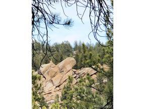 Property for sale at 0000 South Elk Creek Road, Pine,  Colorado 80470