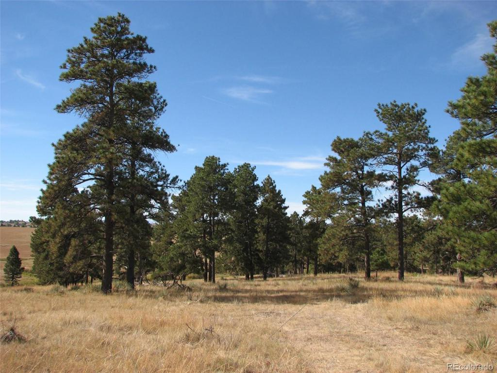 Photo of home for sale at 10562 Shadow Pines Road, Parker CO