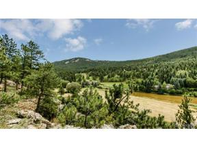 Property for sale at 33697 Valley View Drive, Evergreen,  Colorado 80439