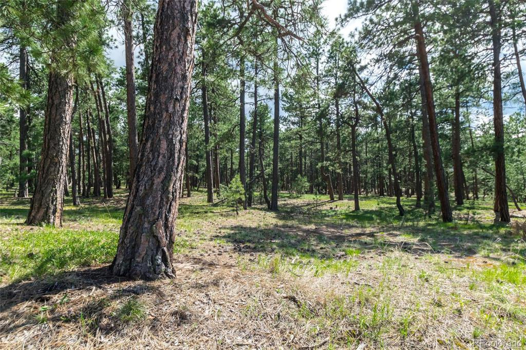 Photo of home for sale at 19124 Hilltop Pines Path, Monument CO
