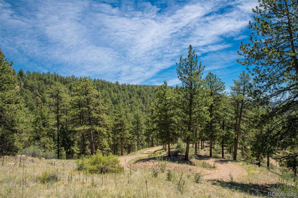 Photo of home for sale at 14433 Lot 3 Elk Creek Road, Pine CO