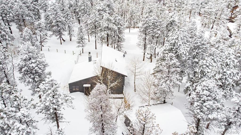 Photo of home for sale at 23908 Mormon Drive, Conifer CO