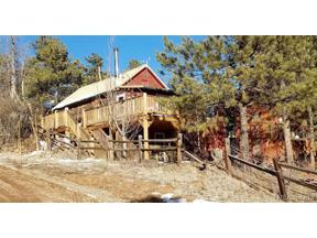 Property for sale at 28488 Cedar Avenue, Pine,  Colorado 80470