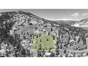 Property for sale at Meadow View Drive, Evergreen,  Colorado 80439